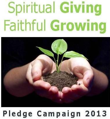 image for stewardship campaign